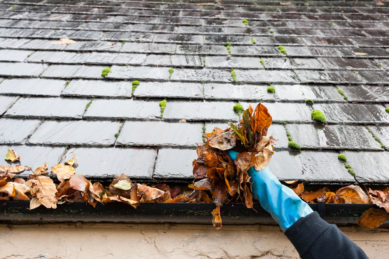 Pulling Leaves Out Of A Home's Gutters As Part Of Fall Maintenance