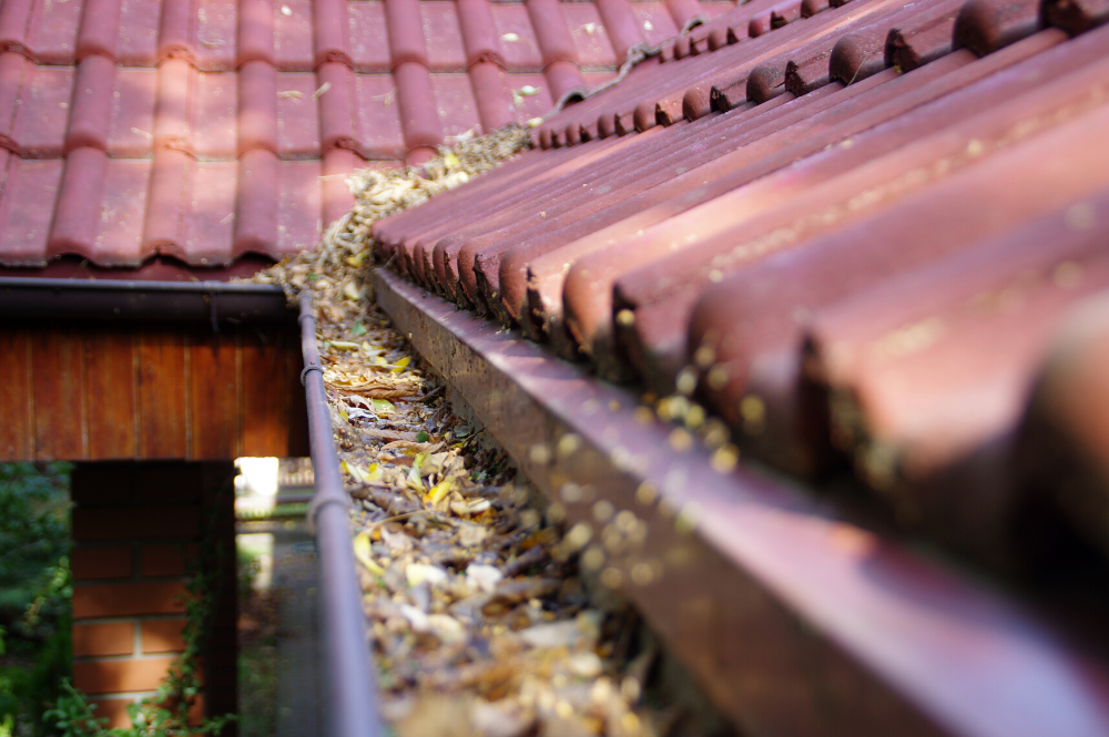 Clogged spring gutters